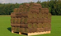 Een pallet met graszoden klaar voor transport