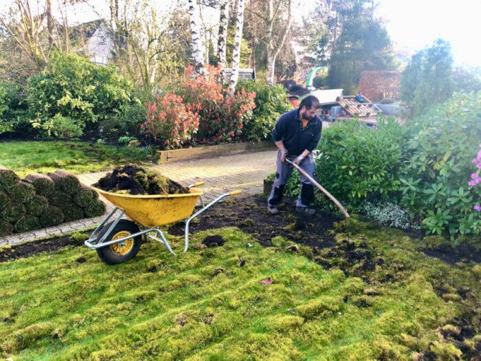 De oude grasmat verwijderen en afvoeren